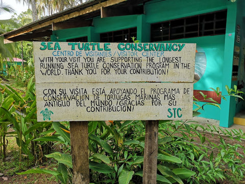 Sea Turtle Conservation Sign