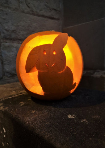 Pumpkin carved with bunny