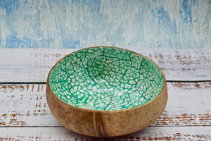 Coloured coconut bowl, teal colour