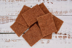 Coconut scourers, Coconut sponges top down view