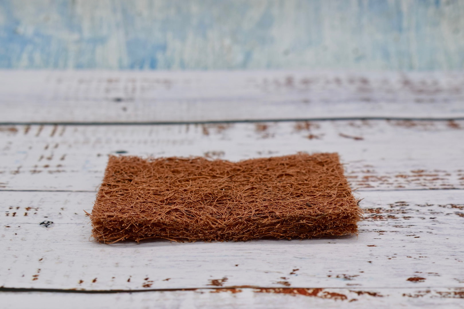 Coconut scourer, Coconut sponge side view