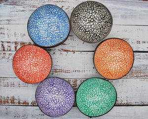 group of all 6 coloured coconut bowls