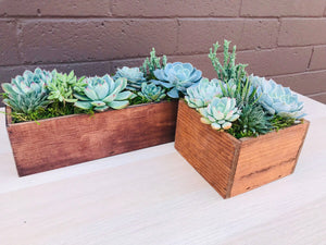 DIY- Large Reclaimed Wood Box Succulent Arrangement