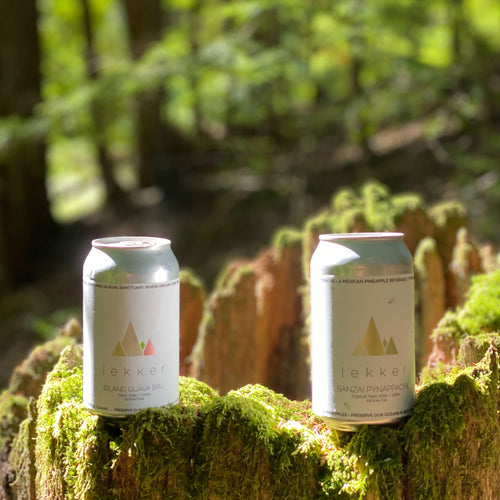 Into the Woods with Lekker Ciders