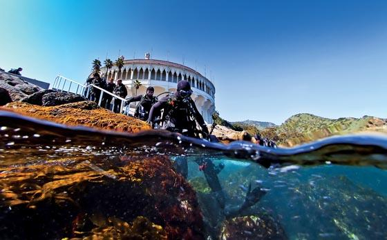 Catalina Island Dive Trip [August 16 2020]