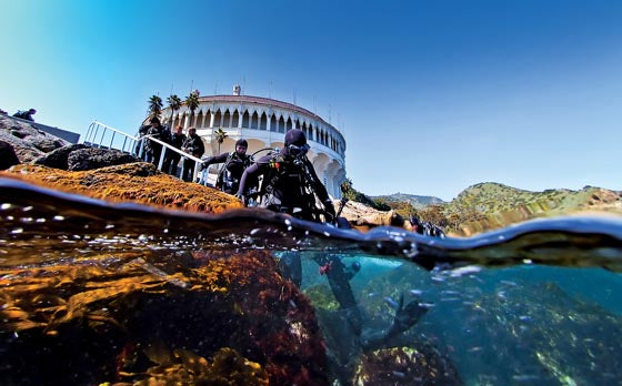 Catalina Island Dive Trip [August 4 2019]