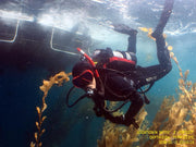 Boat Diver Specialty Course