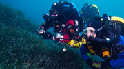 Advanced Rebreather Diver Specialty Course