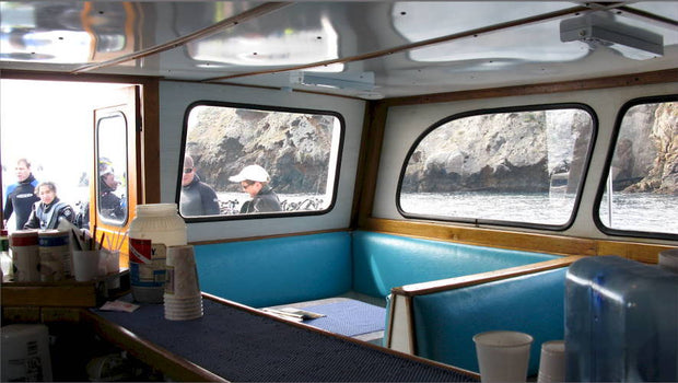 Catalina Island Boat Trip [December 19 2020]