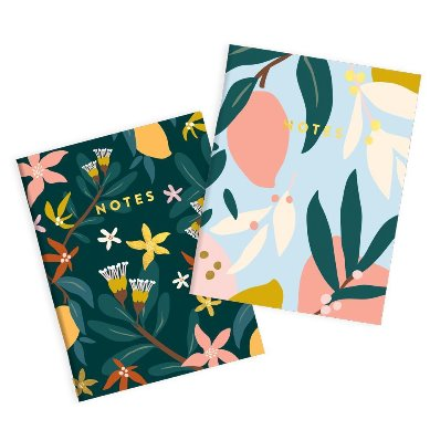 Mango Twin Pocket Notebooks