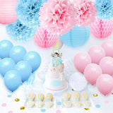 Pink and Blue Gender Reveal Party Decorations -Lantern & Tissue Pom Kit - Pink Gender Party, Baby Shower Decoration, Boy or Girl Baby Party
