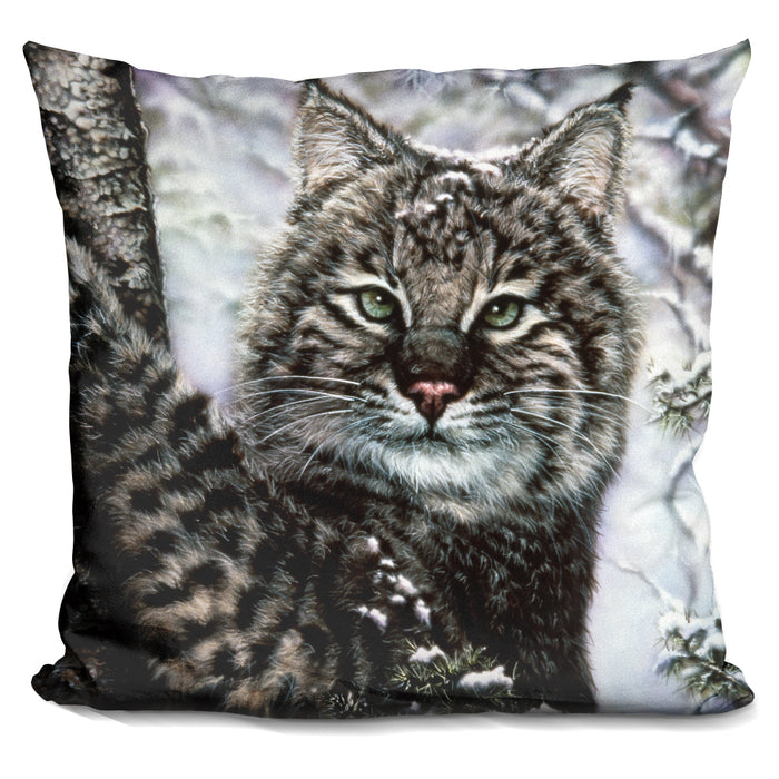 Alluring Eyes Pillow