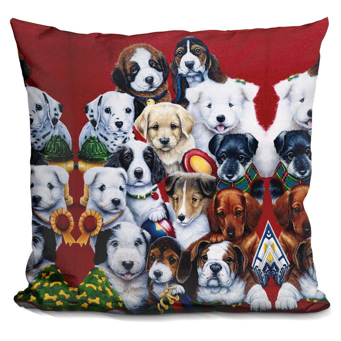 Picture Day Pillow