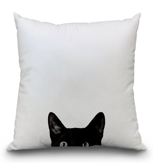 Curiosity Pillow