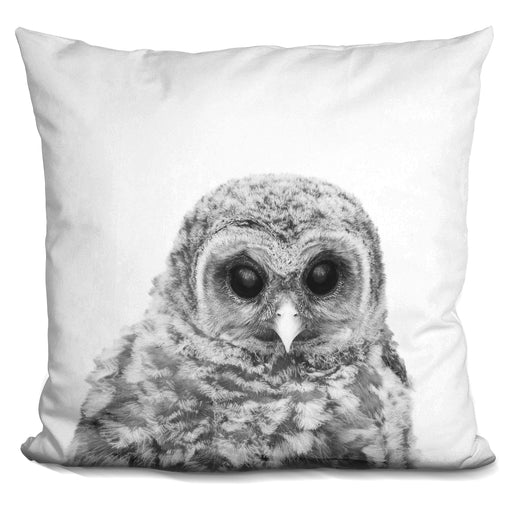 Baby Owl Bw Pillow
