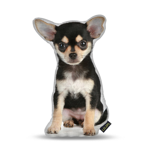 Chihuahua Black Puppy Pillow