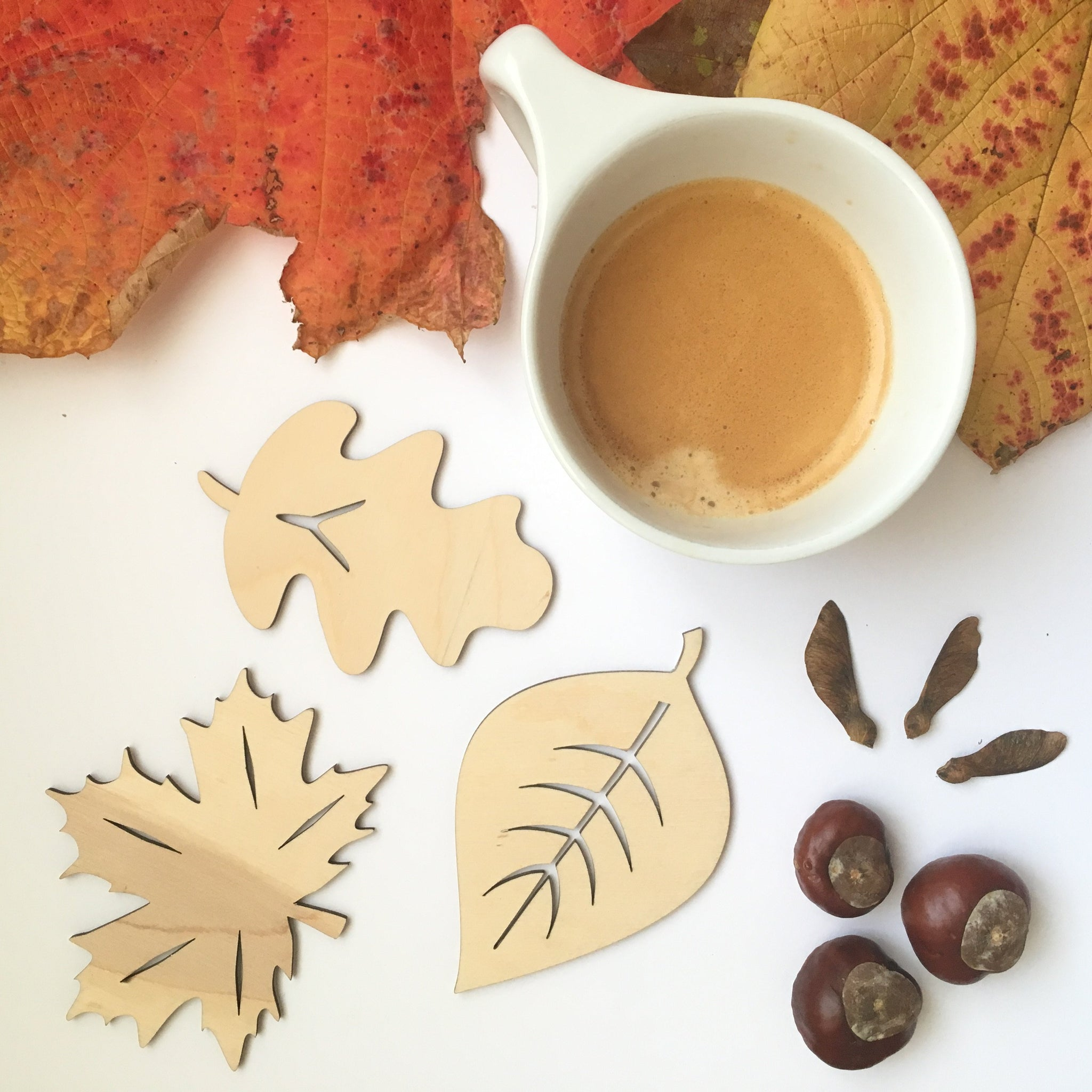 AUTUMNAL LEAF COASTERS