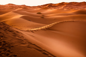 The best tips to visit the unforgettable Sahara desert in Morocco