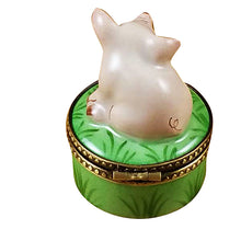 "Load image into Gallery viewer, Rochard ""Mini Pig on Green Base"" Limoges Box"