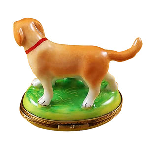 "Rochard ""Blond / Yellow Labrador with Puppy"" Limoges Box"
