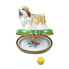 "Load image into Gallery viewer, Rochard ""Shih Tzu Brown"" Limoges Box"