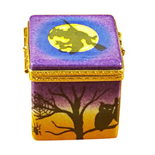 "Load image into Gallery viewer, Rochard ""Ghost in the Box"" Limoges Box"
