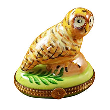 Load image into Gallery viewer, Spotted Owl Limoges Box
