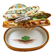 Load image into Gallery viewer, Turtle Family Limoges Box
