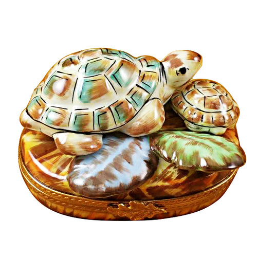 Turtle Family Limoges Box