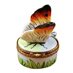 White Butterfly Limoges Box