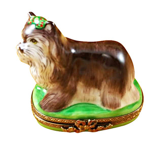 Yorkshire Terrier Green Base Limoges Box