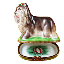 Load image into Gallery viewer, Yorkshire Terrier Green Base Limoges Box