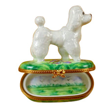 Load image into Gallery viewer, White Poodle on Green Base Limoges Box
