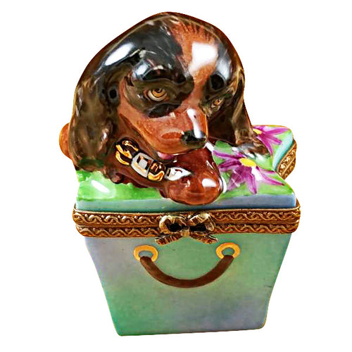 Brown Spaniel in Package Limoges Box