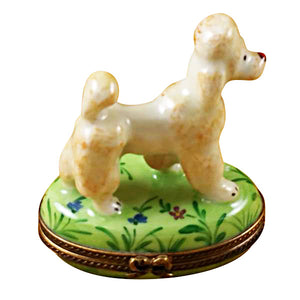 Apricot Poodle on Green Base Limoges Box