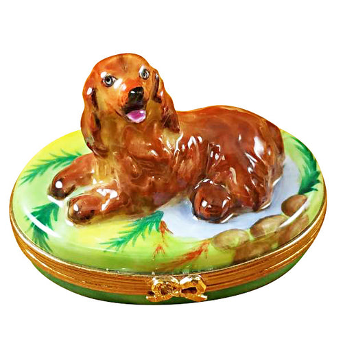 Irish Setter Limoges Box