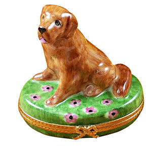 Golden Retriever on Flowers Limoges Box