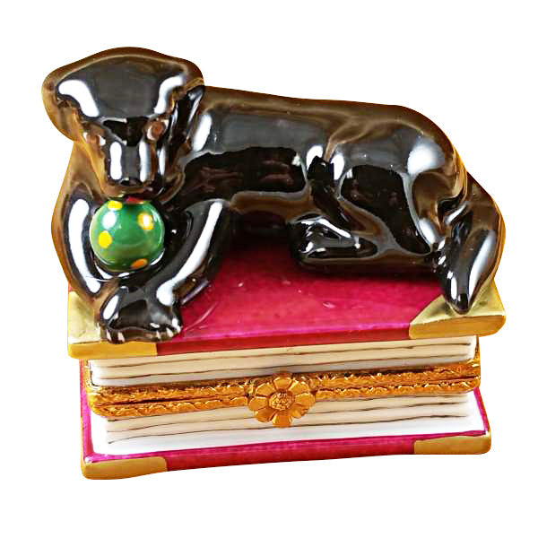 Black Labrador on Book Limoges Box