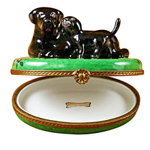 Load image into Gallery viewer, Black Labrador & Puppy Limoges Box