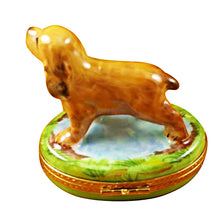 Load image into Gallery viewer, Cocker Spaniel Limoges Box