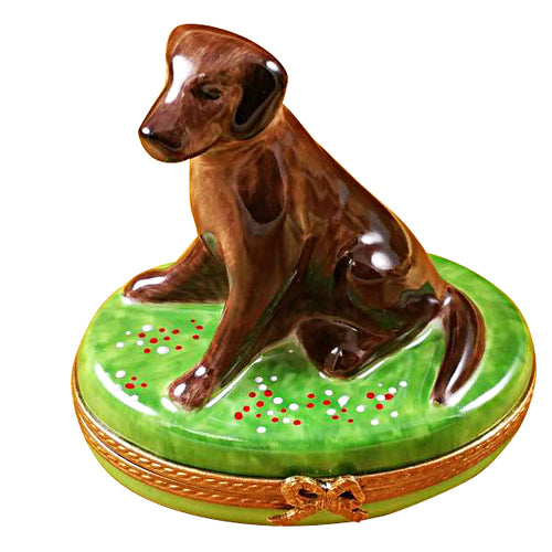 Chocolate Labrador Limoges Box