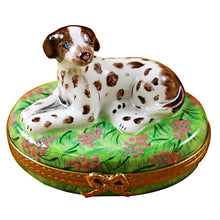 Load image into Gallery viewer, Pointer Dog Limoges Box