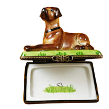 Load image into Gallery viewer, Great Dane Limoges Box