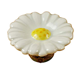 White Daisy Limoges Box