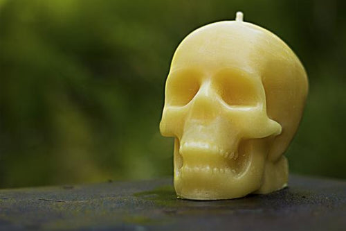 Bees Wax Works - Skull Candle