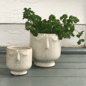 Friendly Face Pots