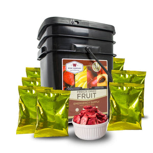 156 Serving Freeze Dried Fruit Bucket--Gluten Free