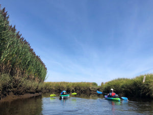 South River Scenic Paddle - August, $38-$48