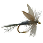 Blue Dun Dry Fishing Fly