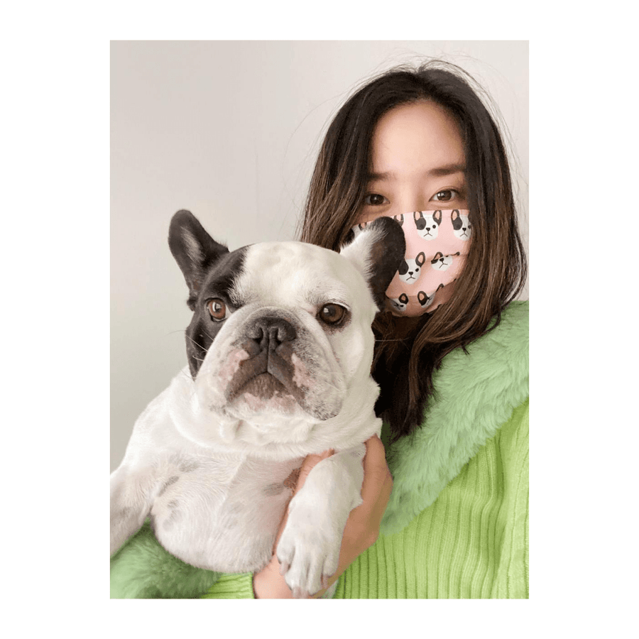 Face Masks - Dog Prints